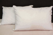 Pillowtex ® Hotel Feather and Down Queen Size Pillow Set