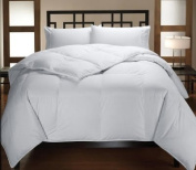 Multiple Sizes - Down Alternative Reversible Comforter White on White - Twin - Exclusively by BlowOut Bedding RN #142035