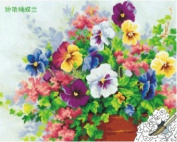 Diy oil painting, paint by number kit- Beautiful Phalaenopsis 16*50cm .