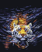 Diy home decor digital canvas oil painting by number kits Water Tiger 16*50cm .
