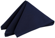Riegel Premier 100-Percent Polyester 50cm by 50cm Napkins, Flag Blue, 8-Pack