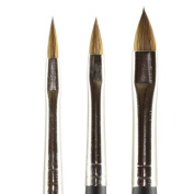 Kolinsky Pure Sable Artist Brush Set Cats Tongue Sizes 2,4,6