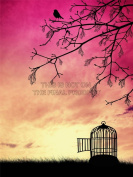 PAINTING DRAWING BIRD CAGE FREE TREE BRANCH SUNSET ART PRINT POSTER MP3701B