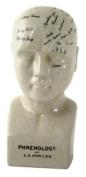 Ceramic Phrenology Head - Small