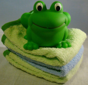 Elegant Baby Rubber Frog and Washcloth Gift Set Baby Shower