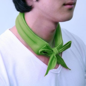 N-rit Cooling Scarf, Wrap a Soaked Tie Around Neck to Chill Out. Crystal Polymers Keeps Wet and Reusable. Great for Outdoors, Sports, Travel, Exercise