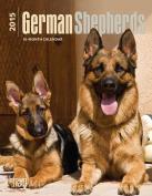 German Shepherds 2015 Engagement