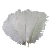 UZZO High Quality New Style Real Natural Ostrich Feathers Great Decorations