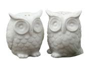 Creative Co-Op Ceramic Owl Salt and Pepper Shaker, Set of 2