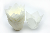50 White Tulip Muffin Wraps by Turtle Products