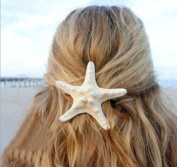 My Sky Handmade Real Starfish Hair Clip Hair Pin Great for Holiday Beach Time