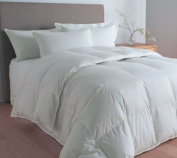 Multiple Sizes - Goose Down Alternative Double Fill Comforter (Duvet)-Queen - Exclusively by BlowOut Bedding RN #142035