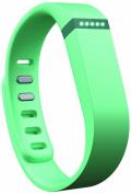 Fitbit Flex Wireless Activity Tracker & Sleep Wristband