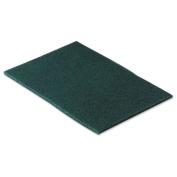 Scotch-Brite PROFESSIONAL - Commercial Scouring Pad, 6 x 9, 10/Pack 96CC (DMi PK