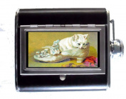 Kitten White Cat in Shoe Sweet Victorian Art