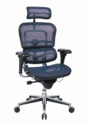 Ergohuman High Back Executive Chair with Headrest - Blue Mesh Seat and Blue Mesh Back - ME7ERG - Blue