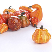 Autumn Mixture of 12 Artificial Gourds and Pumpkins for All Your Fall Harvest Decorating and Displaying