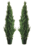 Silk Décor Cedar Topiary with 1565 Tips in Plastic Pot - Pair, 150cm , Green