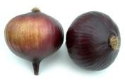 Artificial Purple Onion Box of12