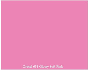 30cm x 3m Roll of Glossy Oracal 651 Soft Pink Repositionable Adhesive-Backed Vinyl for Craft Cutters, Punches and Vinyl Sign Cutters by VinylXSticker