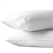 Aller-Ease 100% Cotton Breathable Allergy Pillow Encasement, Set of 2, Queen