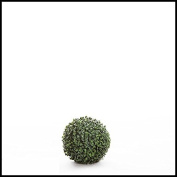 18cm Diameter Artificial Boxwood Sphere, Indoor Rated