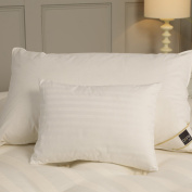 Feather & Down Travel Pillow - With Pillowcase