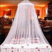 amazing-trading Round Lace Bed Canopy Mosquito Net White Elegant Royal