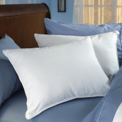 Spring Air 03516 100% Cotton Double Comfort Pillow with Dual Chambers, King/50cm x 90cm , White