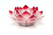 Lotus Tea Candle Holder Capiz Shell Shaded Red Silver Trim Something Different