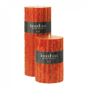 Root Candles 7.6cm by 19cm Unscented Arbour Ridge Pillar Candles, Autumn