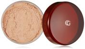 CoverGirl Professional Translucent Face Loose Powder Translucent Light(N) 110, 20ml Shaker top jar
