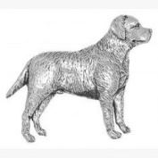 Pewter Labrador Dog Pin Badge or Brooch Gift for Scarf, Tie, Hat, Coat or Bag