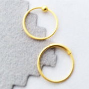 TWO Nose Rings, 12mm, 22 gauge,18k gold over sterling silver, captive bead and plain hoop, lip,eyebrow,body piercing,septum