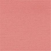 Bazzill Cardstock 30cm x 30cm -Arroyo/Grass Cloth 25 per pack