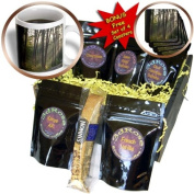 cgb_91421_1 Danita Delimont - Forests - Forest, Wilderness Drive, Itasca SP, Minnesota - US24 PHA0122 - Peter Hawkins - Coffee Gift Baskets - Coffee Gift Basket