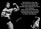 Inspirational Motivational Quote Sign Poster Print Picture Arnold Schwarzenegger signed SPORTS,LIFE,BOXING, CYCLING, ATHLETICS, BODYBUILDING, TRIATHLON,BASKETBALL, FOOTBALL, RUGBY, SWIMMING, MARTIAL ARTS ETC ETC