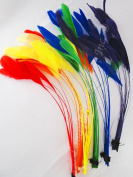 Stripped coque, MIX, Rainbow, 15cm - 20cm feathers, approx 40 feathers total, per each mix pack
