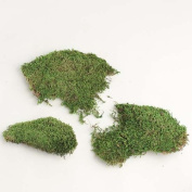 60mls of Dried Artificial Forest Sheet Moss for Embellishing and Crafting