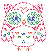 Hand-made Rhinestone Hot Fix Motif Fashion Design Owl Fluorescent Colours Cute 3 Sheets