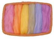 6 Colour Fine Wool Roving - Pastel Colours - 46cm Each