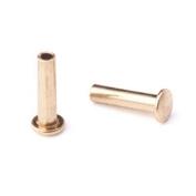 0.2cm Dia. 0.6cm Long Brass Rivet