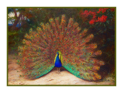 Peacock Butterfly by Naturalist Archibald Thorburn's Bird Counted Cross Stitch Chart