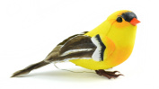 Touch of Nature 20553 American Goldfinch Bird, 10cm