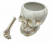 Cool Ceramic Skull Bowl W/ Bone Spoon