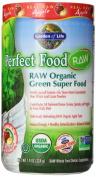 Garden of Life Perfect Food Raw Organic Green Super Food, Apple, 224 Gramme