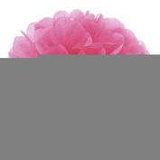 Come 2 Buy - Pack of 10 20cm /25cm /30cm DIY Tissue Paper Flower Pom Poms Perfect For Christmas Wedding And Birthday Party Decorations Decor - Vintage Lace - 25cm 10pcs Hot Pink