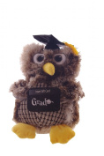 Graduation 30cm Owl Stuffed Animal Gift Card Holder