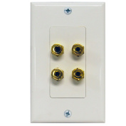 Two Channel Speaker Wall Plate