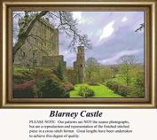 Blarney Castle, Irish Counted Cross Stitch Pattern